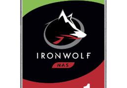 Segate IronWolf Nas